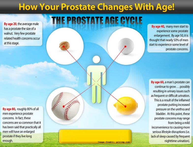 Prostate Changes with Age image